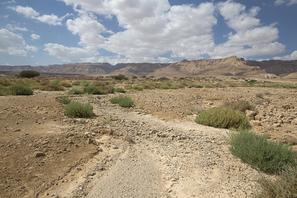 Wadi am Toten Meer