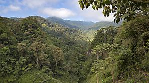 Bilder Fotoreise Costa Rica 2019