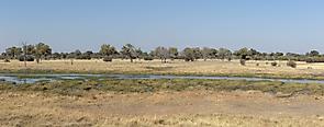 Khwai River